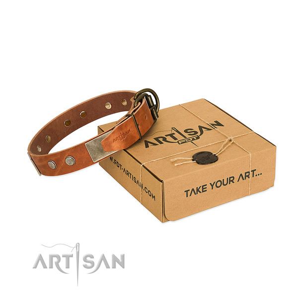 Rust-proof D-ring on dog collar for daily use