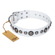 """Ice Age"" FDT Artisan White Studded Leather dog Collar"