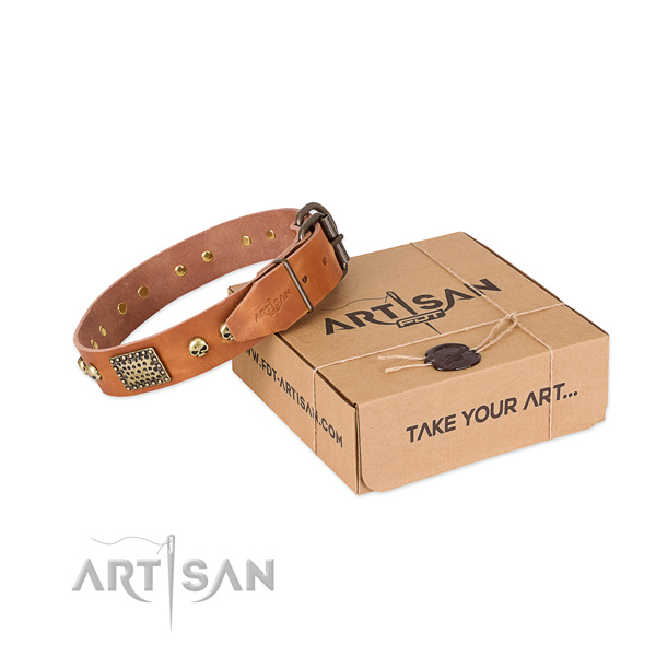 Rust-proof decorations on dog collar for daily walking