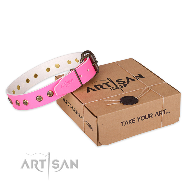 Rust resistant hardware on leather collar for your attractive dog