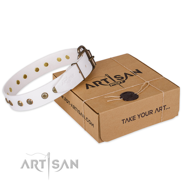 Reliable buckle on leather collar for your lovely dog