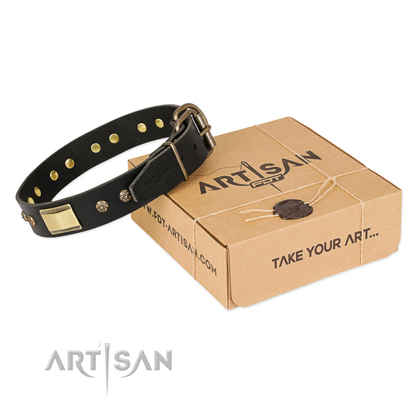 Adorned natural leather collar for your attractive four-legged friend
