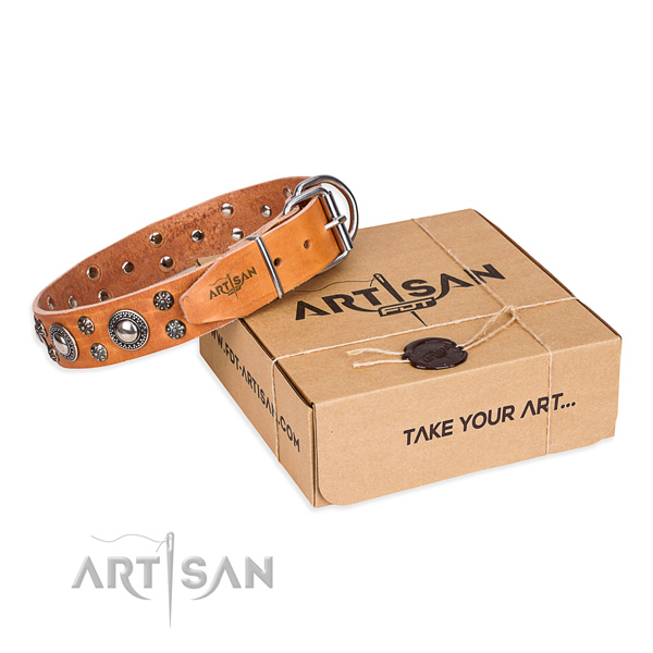 Comfortable wearing dog collar of fine quality full grain natural leather with embellishments