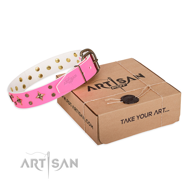 Stylish walking dog collar of quality genuine leather with adornments