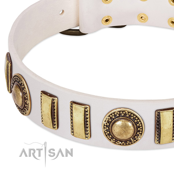Gentle to touch leather dog collar with corrosion proof buckle
