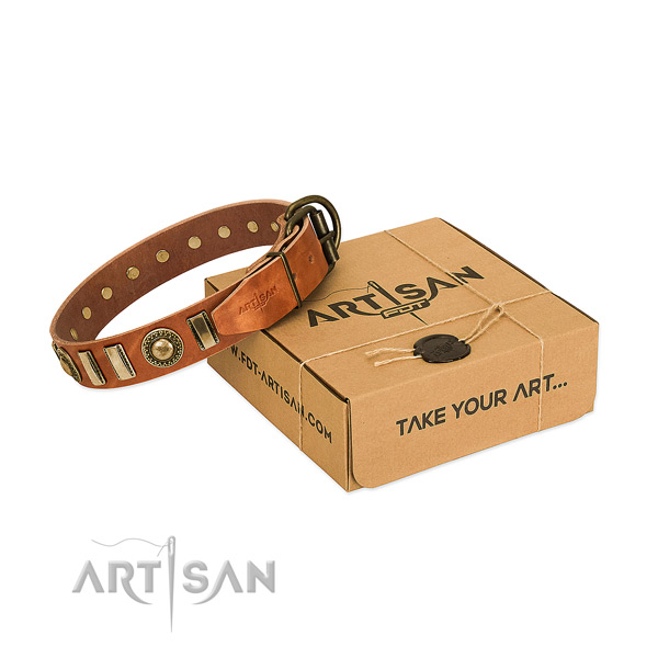 Reliable full grain leather dog collar with rust-proof fittings