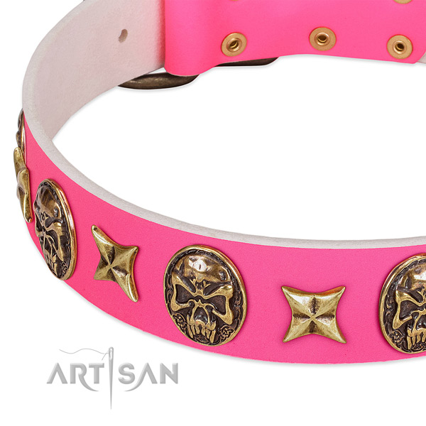 Full grain genuine leather dog collar with awesome studs