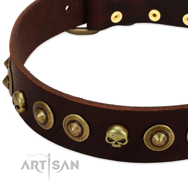 Exquisite studs on full grain leather collar for your pet