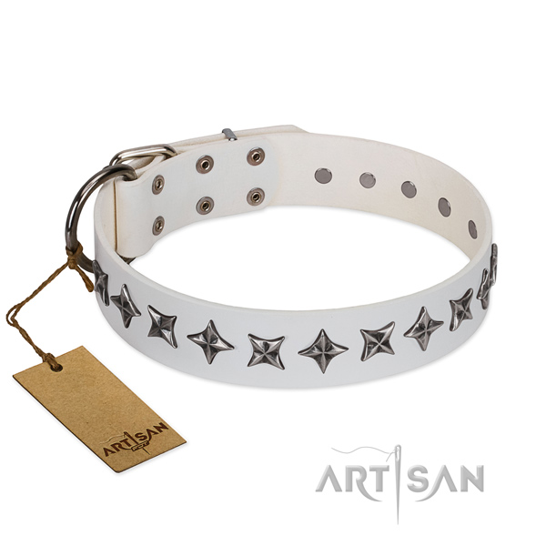 Everyday use dog collar of fine quality full grain genuine leather with embellishments