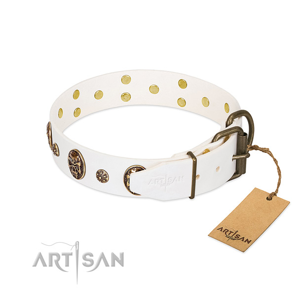 Rust-proof embellishments on natural genuine leather dog collar for your four-legged friend