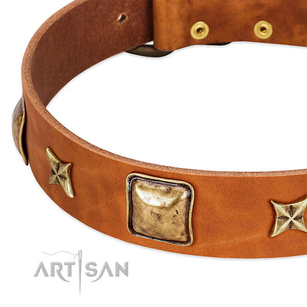 Rust-proof fittings on natural genuine leather dog collar for your canine