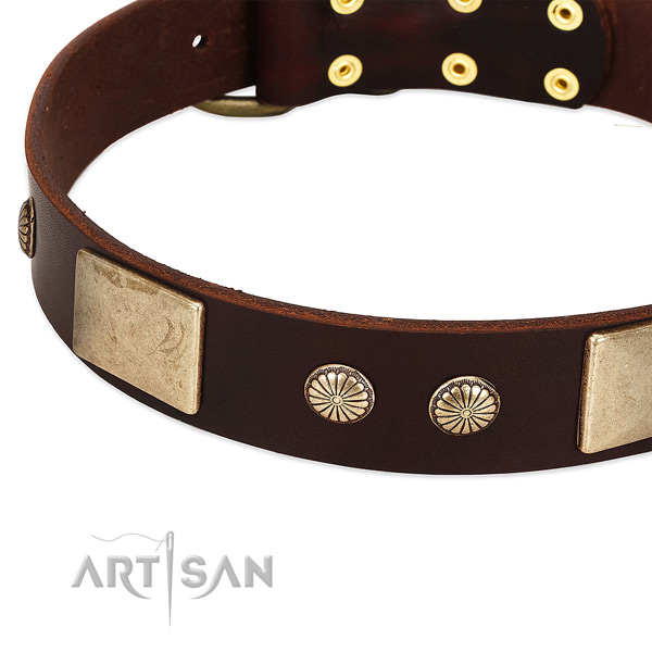 Durable buckle on full grain genuine leather dog collar for your four-legged friend