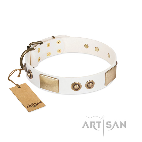 Rust-proof hardware on natural genuine leather dog collar for your dog