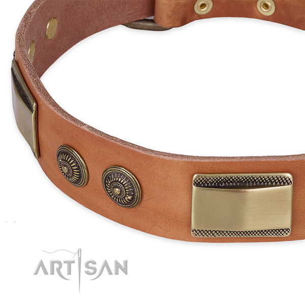 Remarkable full grain leather collar for your attractive four-legged friend