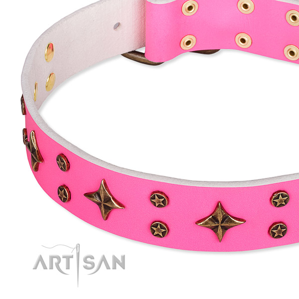 Fancy walking studded dog collar of fine quality full grain leather