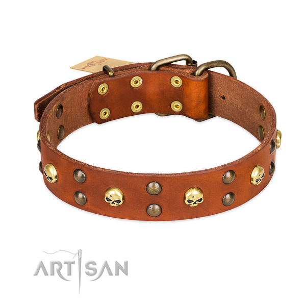 Handy use dog collar of strong leather with adornments