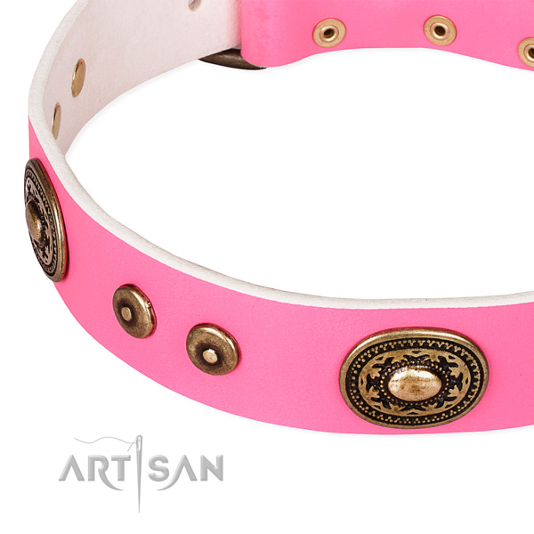 Full grain natural leather dog collar made of reliable material with adornments