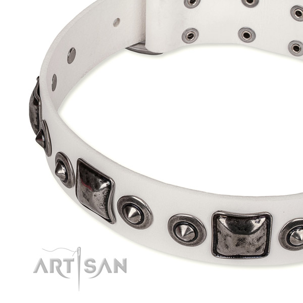Top rate leather dog collar crafted for your attractive doggie