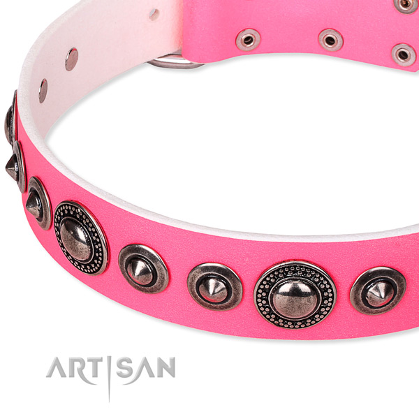 Everyday use studded dog collar of top quality full grain natural leather