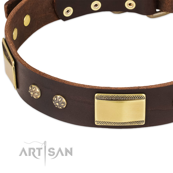 Corrosion resistant fittings on full grain leather dog collar for your pet