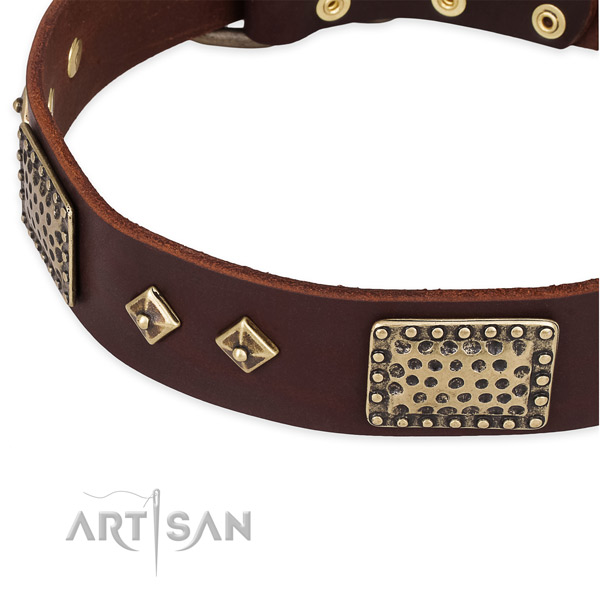 Reliable fittings on full grain natural leather dog collar for your four-legged friend