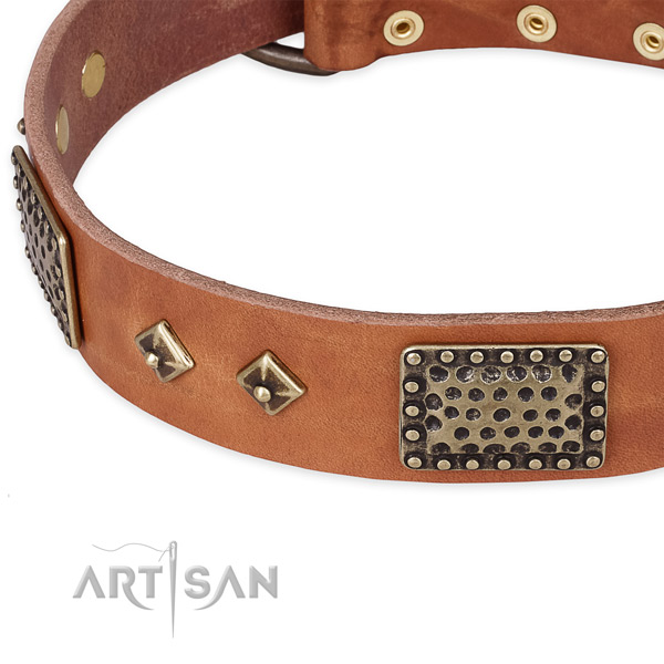Strong studs on full grain leather dog collar for your canine