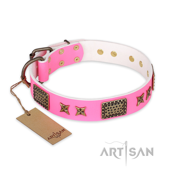 Stylish genuine leather dog collar with strong traditional buckle
