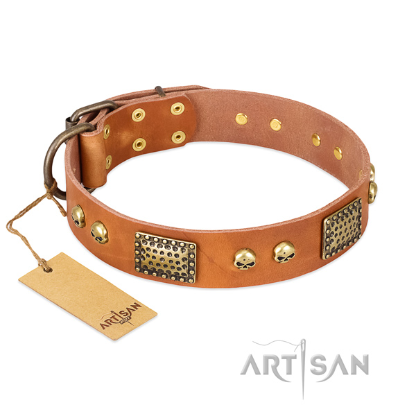 Easy to adjust full grain genuine leather dog collar for stylish walking your dog