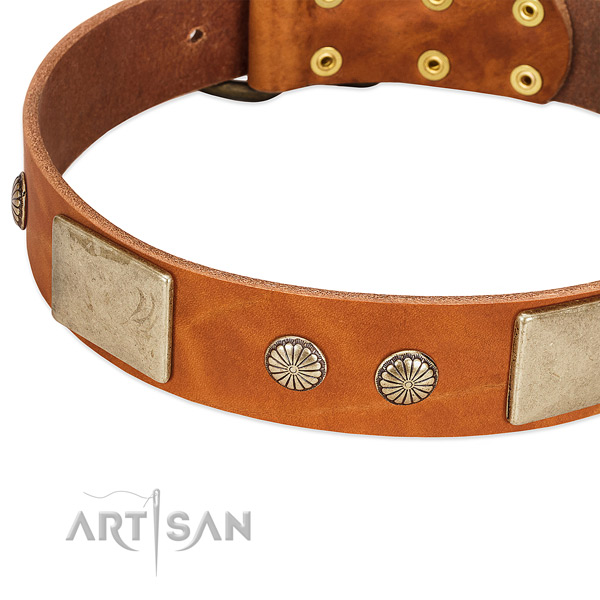 Durable traditional buckle on genuine leather dog collar for your doggie