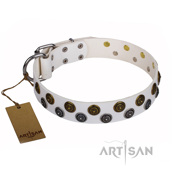 Handy use dog collar of finest quality full grain leather with decorations