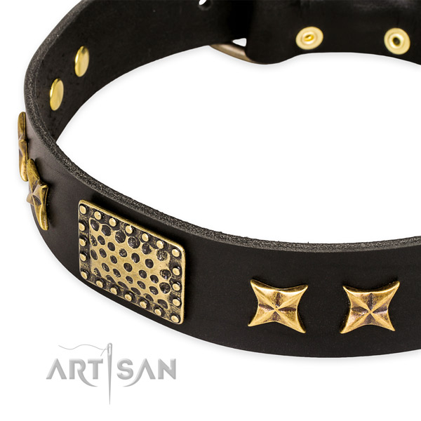 Full grain genuine leather collar with strong traditional buckle for your stylish pet