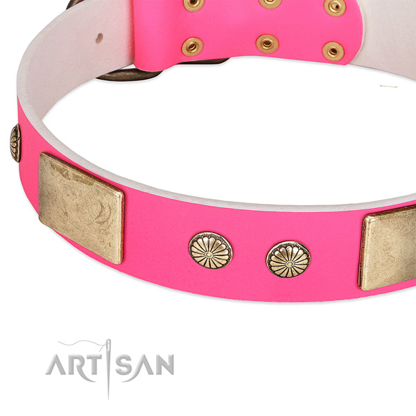 Rust resispinkt embellishments on full grain genuine leather dog collar for your pet