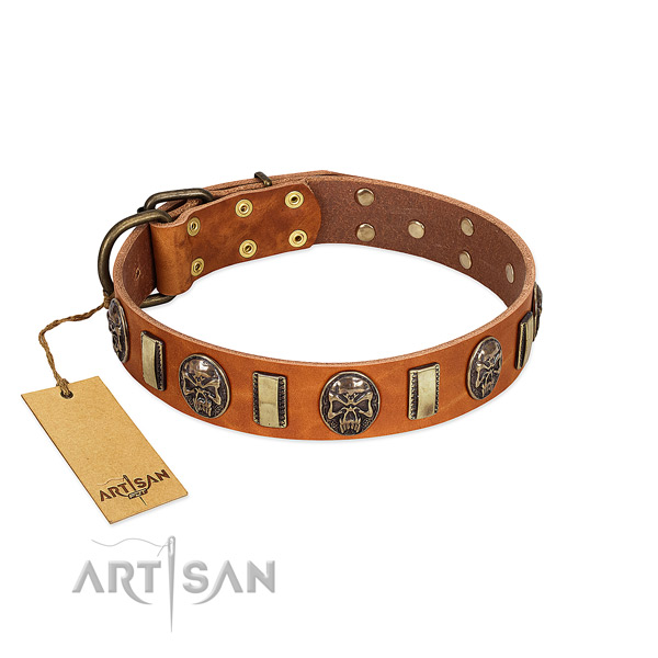 Stylish design genuine leather dog collar for fancy walking