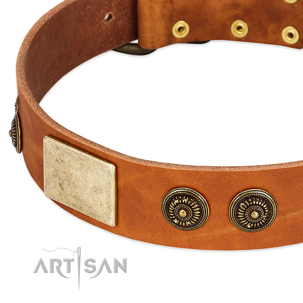 Unique dog collar handmade for your attractive pet