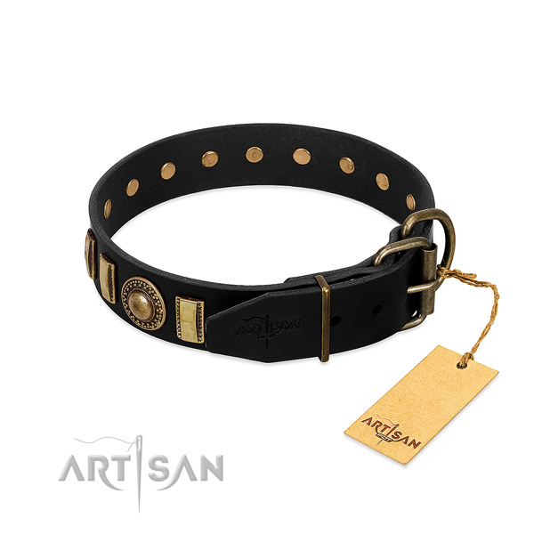 Top notch genuine leather dog collar with adornments