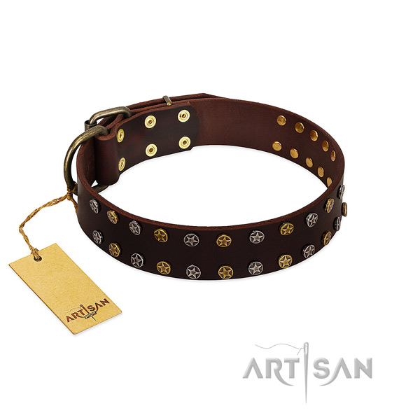 Daily use reliable full grain natural leather dog collar with decorations