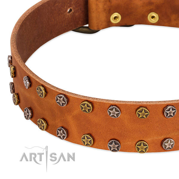 Handy use natural leather dog collar with unique adornments