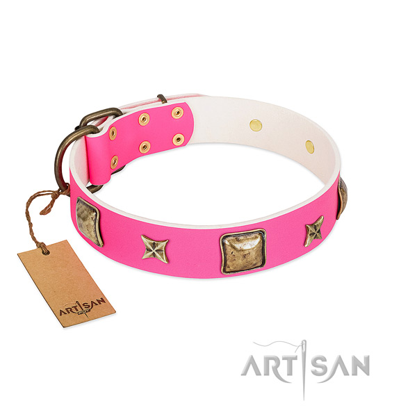 Natural leather dog collar of top rate material with inimitable adornments