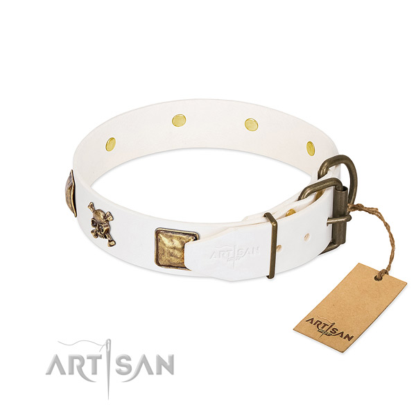 Daily walking full grain leather dog collar with unique adornments