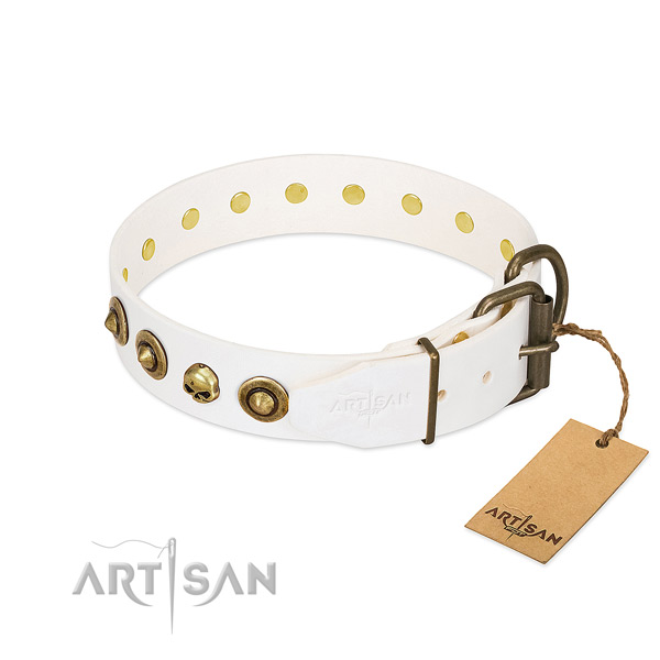 Genuine leather collar with stunning studs for your doggie