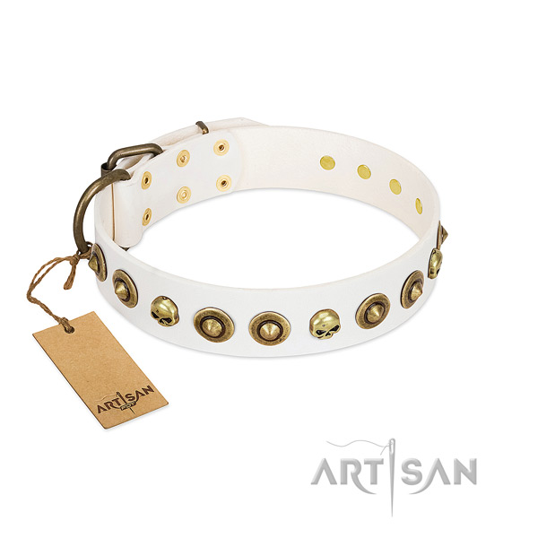 Genuine leather collar with designer studs for your canine