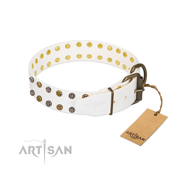 Designer full grain natural leather dog collar with rust resistant studs