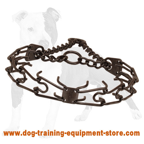 Prong collar of rust-proof black stainless steel for badly behaved pets