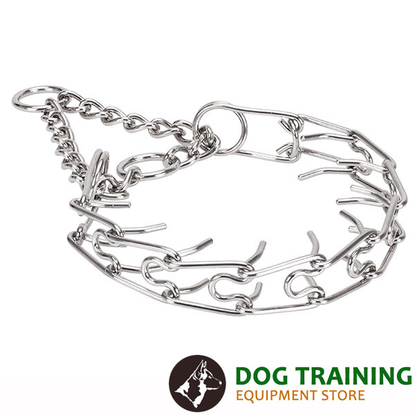 Strong corrosion proof dog prong collar with stainless steel removable links
