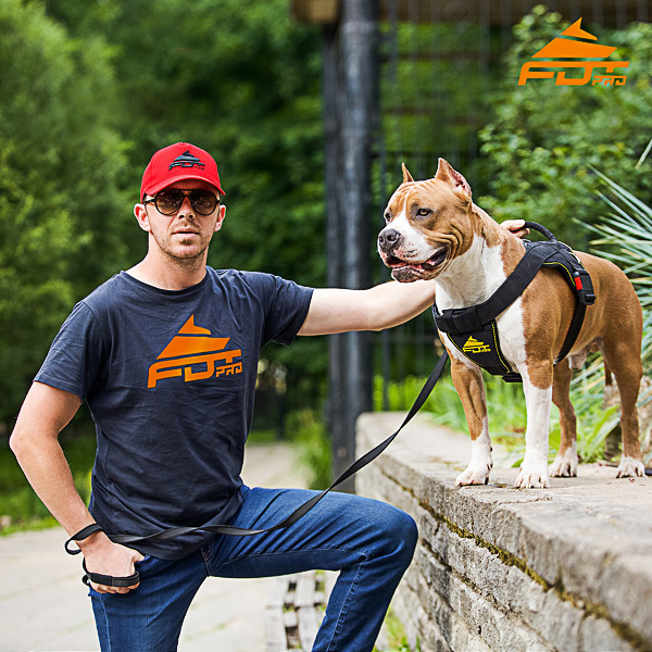 Men T-shirt of Top Quality Cotton with Orange Logo for Dog Training