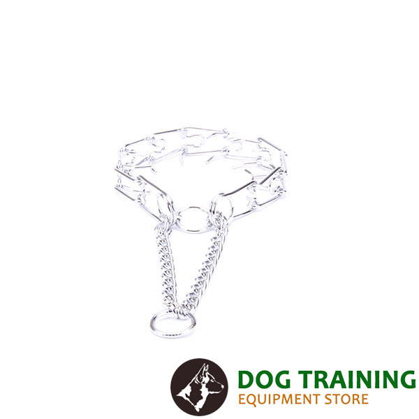 Dog prong collar chrome plated for poorly behaved dogs