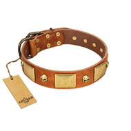 """Mutt The Daredevil"" FDT Artisan Tan Leather dog Collar with Old Bronze-like Skulls and Plates"