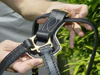 leather dog harness made of padded nappa