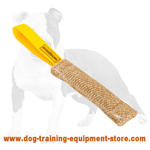 Dog Training Jute Bite Puppy Tug