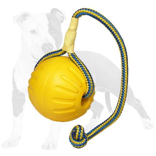 Interactive dog ball made of foam